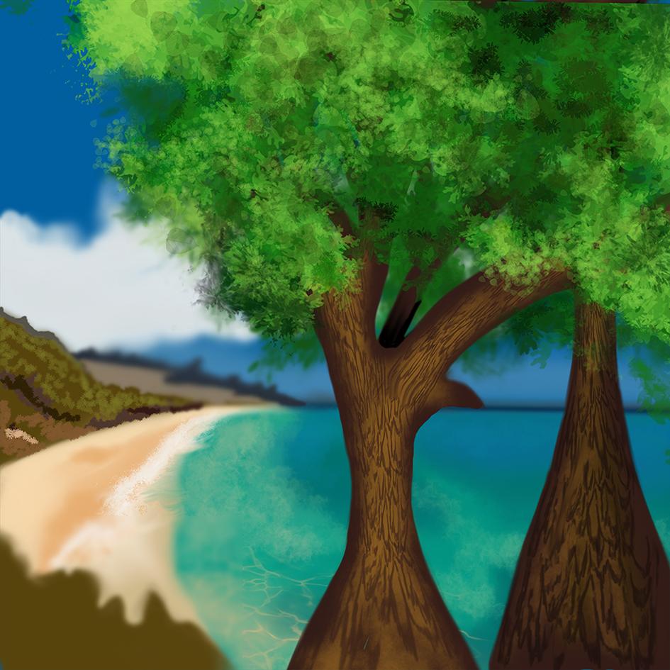 hits scenery beach cliff